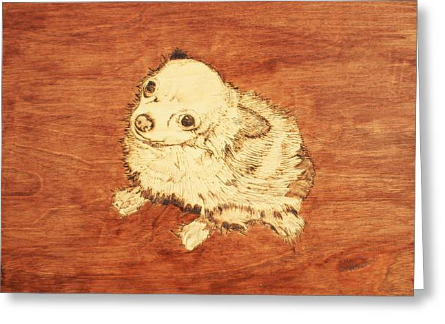 Breeds Pyrography Greeting Cards - Long Hair Chihuahua Greeting Card by Jeremy Cardenas