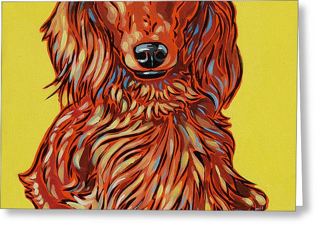 Long Haired Dachshund Greeting Card by Nadi Spencer