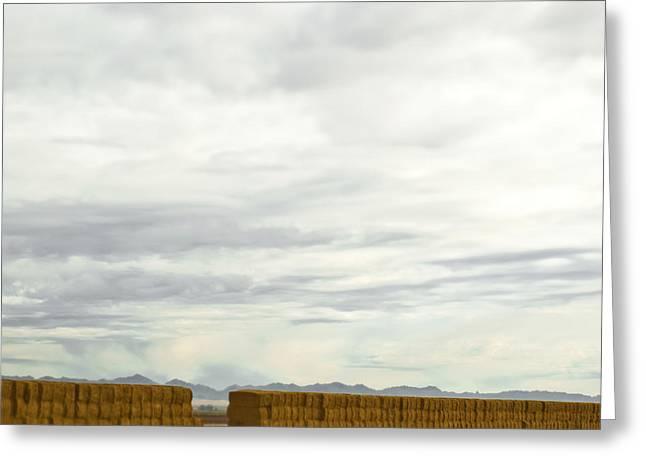 Hay Bales Greeting Cards - Long Line of Hay Bales Greeting Card by Eddy Joaquim