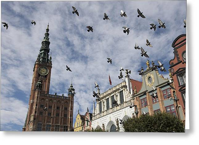 Large Clock Greeting Cards - Long Market With Pigeons, Town Hall Greeting Card by Keenpress