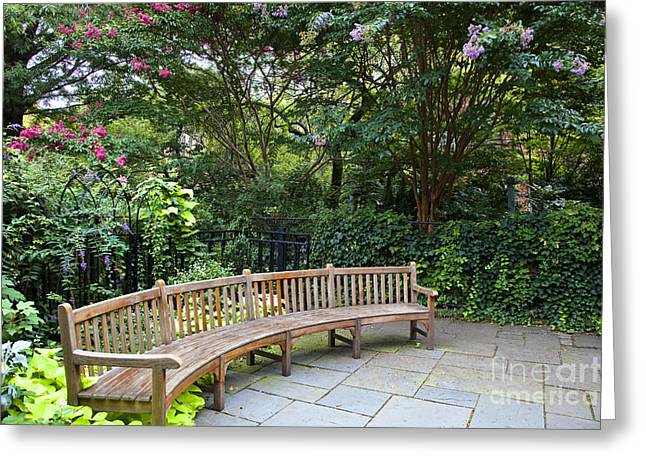 Trellis Greeting Cards - Long Rounded Park Bench Greeting Card by Inti St. Clair