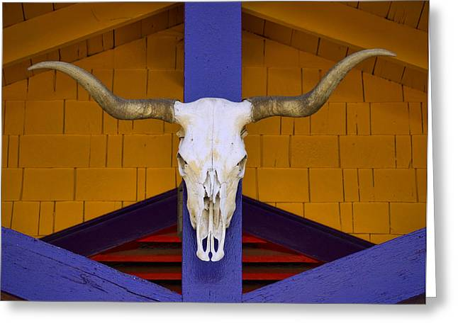 Santa Fe Desert Greeting Cards - Longhorn Greeting Card by Carol Leigh