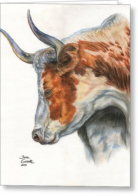 Western Western Art Pastels Greeting Cards - Longhorn Greeting Card by Jana Goode