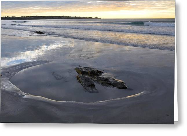 Best Sellers -  - Tidal Photographs Greeting Cards - Longsands Rock 2 Greeting Card by Catherine Easton
