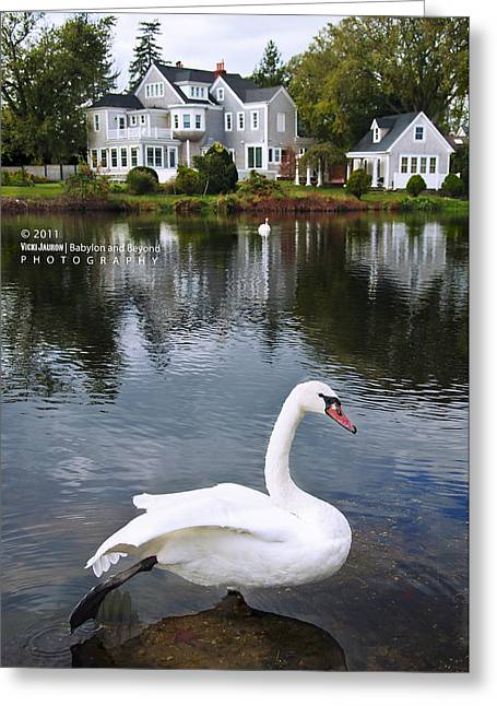 Babylon Village Greeting Cards - Look at What the Swan Can Do Greeting Card by Vicki Jauron
