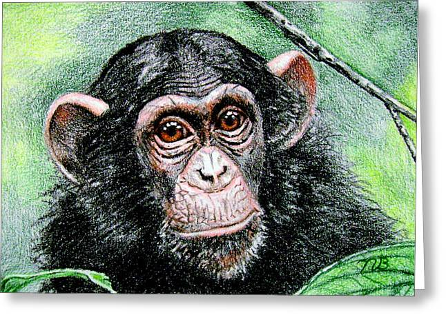 Prisma Colored Pencil Greeting Cards - Look Into My Eyes Greeting Card by Nils Beasley