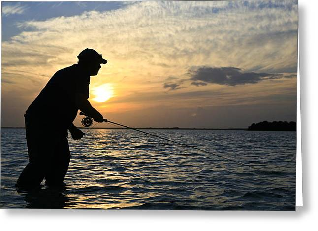 35-39 Years Greeting Cards - Looking For Bonefish On The Flats Greeting Card by Drew Rush