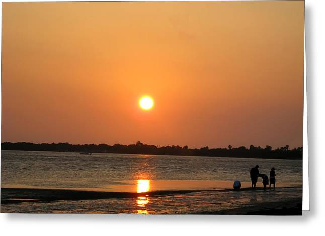 Dunedin Greeting Cards - Looking for Shells on the the Beach - Dunedin Florida Greeting Card by Bill Cannon