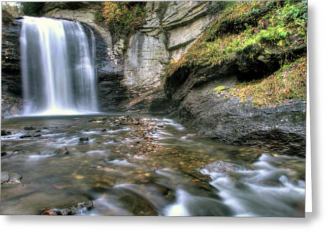 Waterfalls Pyrography Greeting Cards - Looking Glass Falls Greeting Card by Katelyn Hemleb