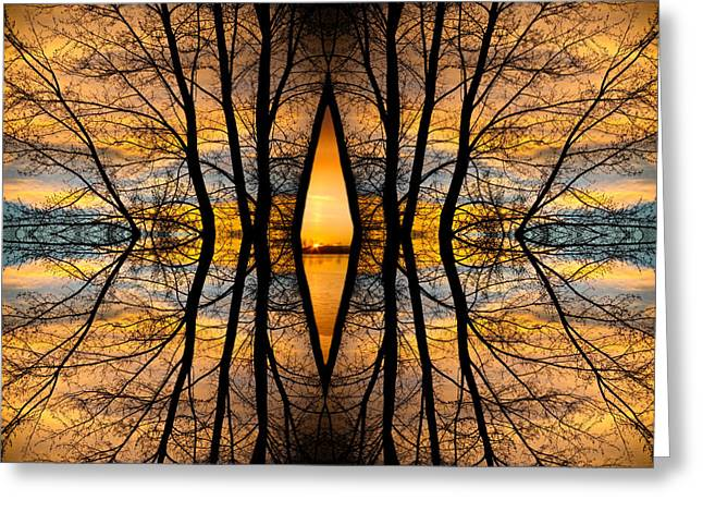 Sunset Canvas Art Greeting Cards - Looking Through The Trees Abstract Fine Art Greeting Card by James BO  Insogna