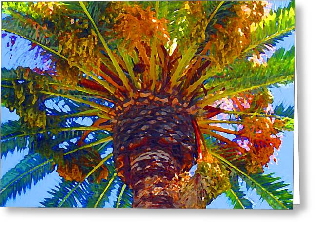 Digital Photographs Greeting Cards - Looking up at Palm Tree  Greeting Card by Amy Vangsgard
