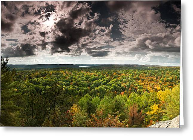 Algonquin Greeting Cards - Lookout Trail Greeting Card by Cale Best