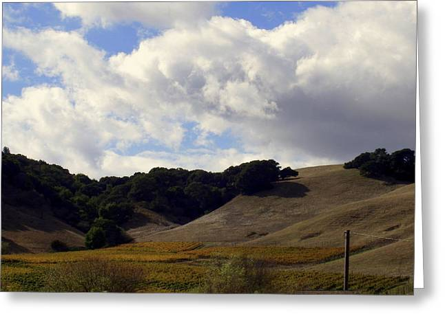 Field. Cloud Greeting Cards - Looming Field of Sonoma Greeting Card by Deborah  Crew-Johnson