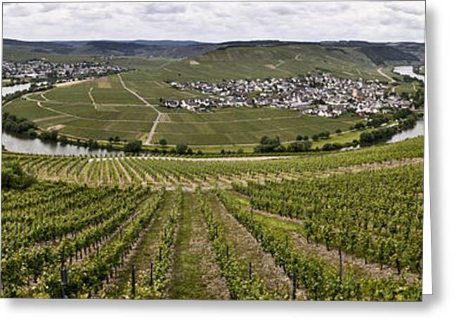 Viticulture Greeting Cards - Loop of the Moselle Greeting Card by Heiko Koehrer-Wagner