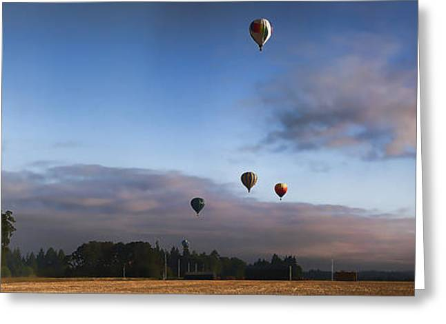 Loose Greeting Cards - Loose Goose IV Hot Air Balloon Rally IMG 6492 Greeting Card by Torrey E Smith