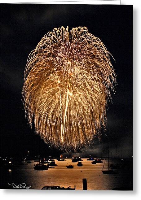 4th July Photographs Greeting Cards - Lopez Island Fireworks 1 Greeting Card by David Salter