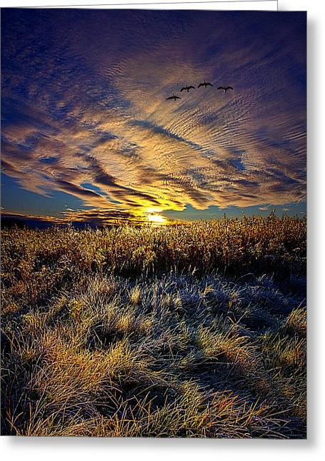 Geographic Greeting Cards - Lost Horizon Greeting Card by Phil Koch