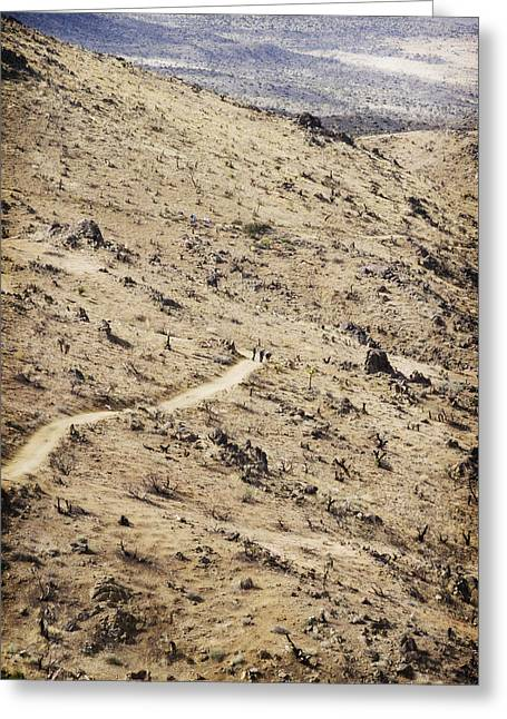 Scorch Trails Greeting Cards - Lost Horse Mine Trail 5 Greeting Card by Jessica Velasco