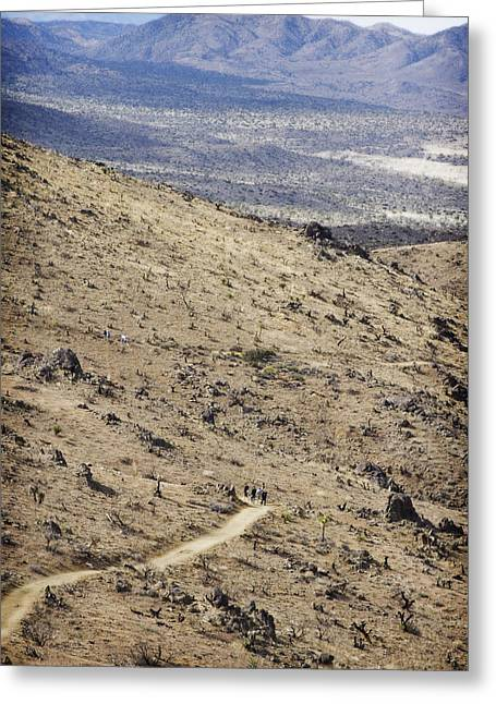 Scorch Trails Greeting Cards - Lost Horse Mine Trail 7 Greeting Card by Jessica Velasco