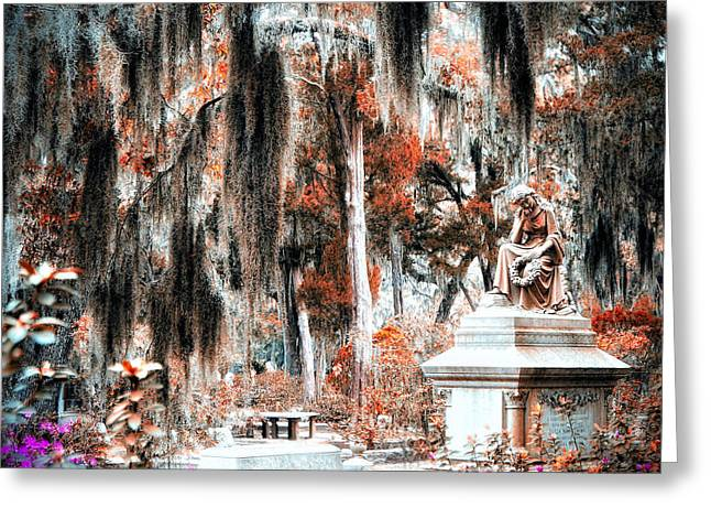 Charlotte Nc Photography Greeting Cards - Lost in Moss Greeting Card by Diane Payne