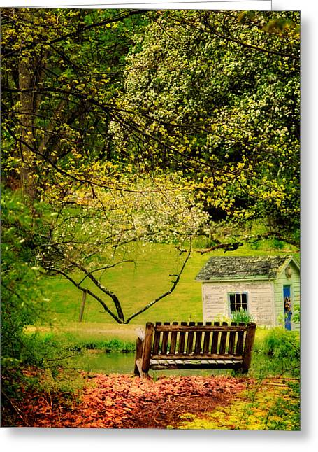 Azalias Greeting Cards - A Bench under Spring Canopy Greeting Card by Thomas Schoeller