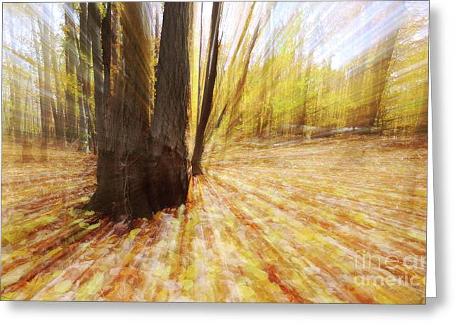 Ghostly Greeting Cards - Lost in time Greeting Card by Mircea Costina Photography