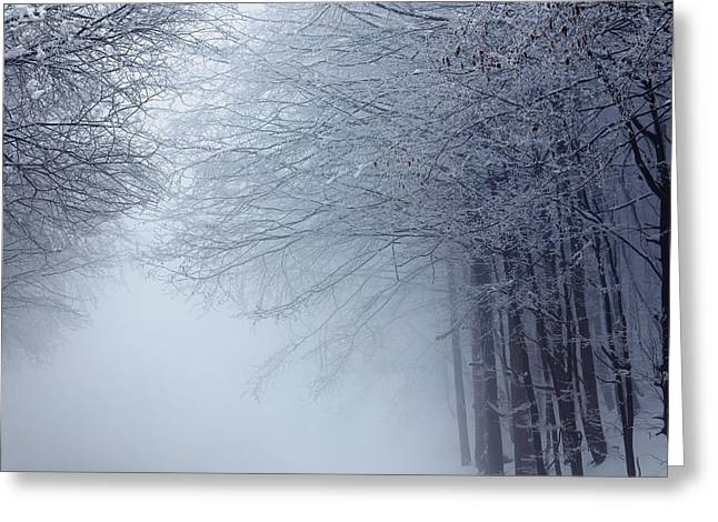Mountain Road Photographs Greeting Cards - Lost way Greeting Card by Evgeni Dinev