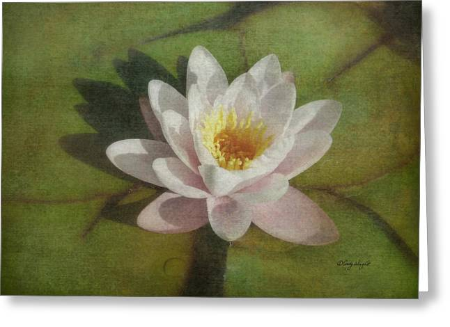 Lotus Blossom Textured Greeting Card by Cindy Wright
