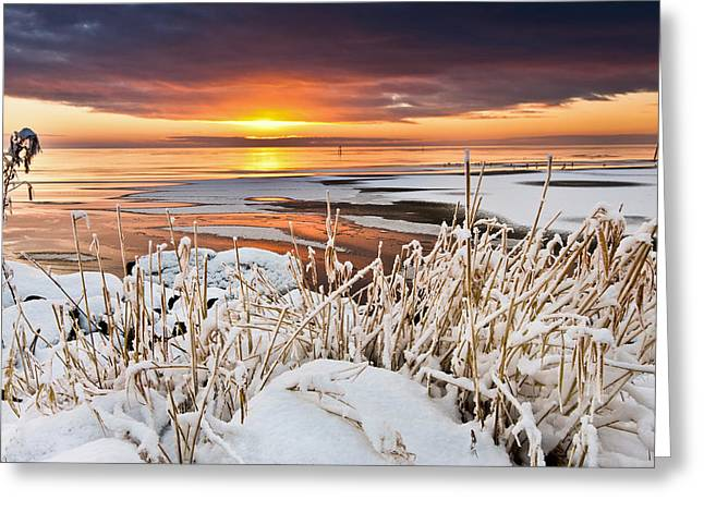 Neagh Greeting Cards - Lough Neagh Sunset Greeting Card by John Taggart