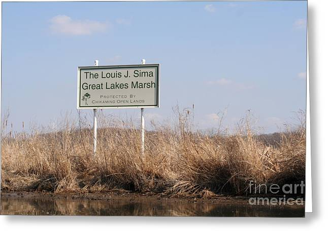 Morass Greeting Cards - Louis J. Sima Great Lakes Marsh Greeting Card by Christopher Purcell