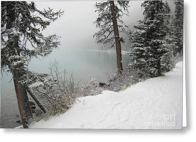 Snowstorm Posters Greeting Cards - Louise Banks Greeting Card by Andrea Hazel Ihlefeld