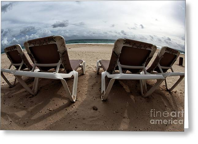 Lounging Greeting Card by John Rizzuto