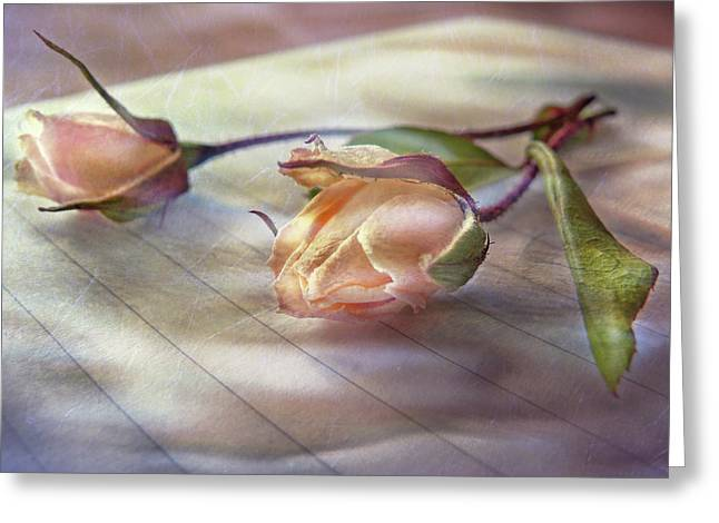 Love Letter Greeting Cards - Love Abandonded Greeting Card by Marion Cullen