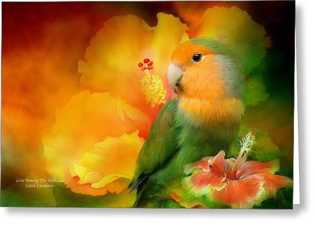 Tropical Bird Art Greeting Cards - Love Among The Hibiscus Greeting Card by Carol Cavalaris