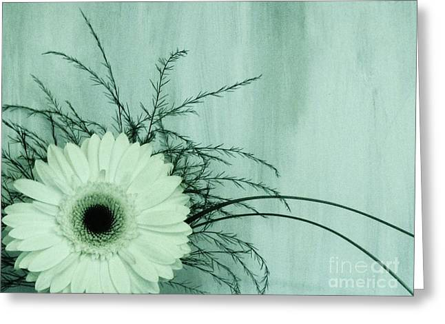 Floral Photos Greeting Cards - Love and Purity Greeting Card by Marsha Heiken