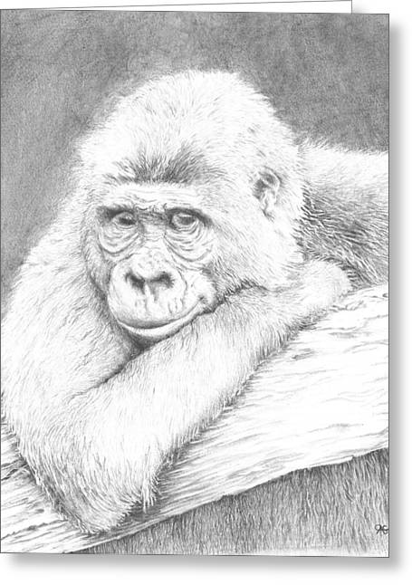 Gorilla Drawings Greeting Cards - Love in the Mist Greeting Card by Carol McLagan