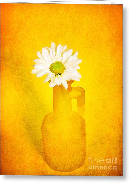 Love Image Greeting Cards - Love me Love me Not Greeting Card by Darren Fisher
