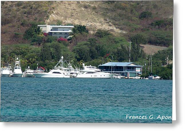 Best Sellers -  - Mangrove Forest Greeting Cards - Lovely Boats Greeting Card by Frances G Aponte