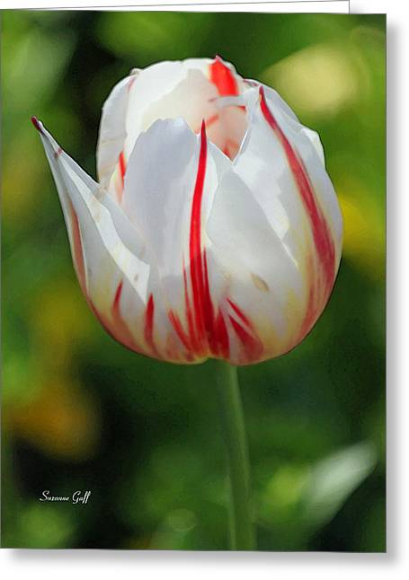 Spring Bulbs Digital Art Greeting Cards - Lovely Bones II Greeting Card by Suzanne Gaff