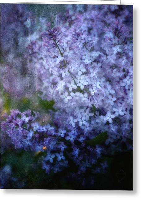 Lilac Greeting Cards - Lovely Lilac Greeting Card by Ellen Heaverlo