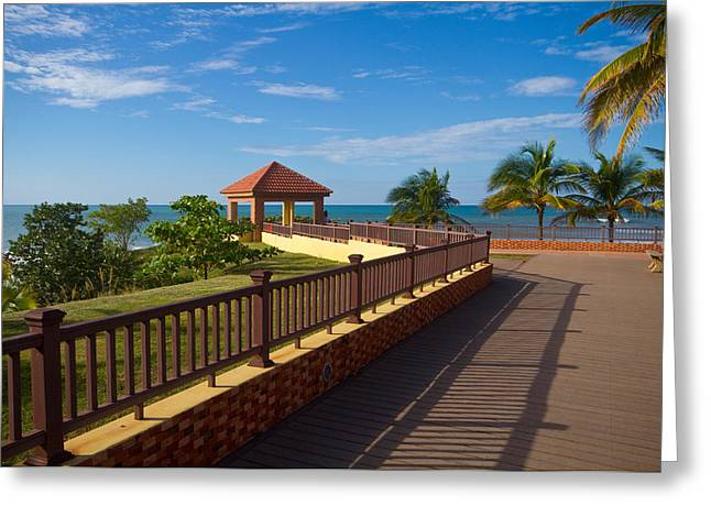 Rincon Greeting Cards - Lovely Lookout Greeting Card by Tim  Fitzwater