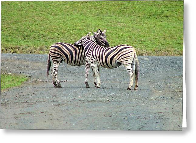 Zebra Greeting Cards Greeting Cards - Lovin Stripes Greeting Card by Wendy McKennon