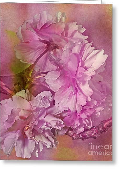 Cs5 Greeting Cards - Loving Promises Greeting Card by Georgiana Romanovna