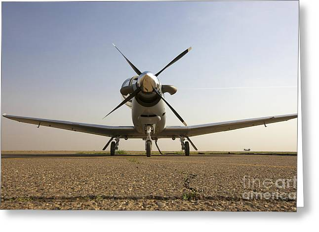 Cob Speicher Greeting Cards - Low Angle View Of An Iraqi Air Force Greeting Card by Terry Moore