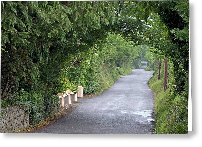 Low Road Greeting Cards - Low Road Bunratty Greeting Card by John Burnett