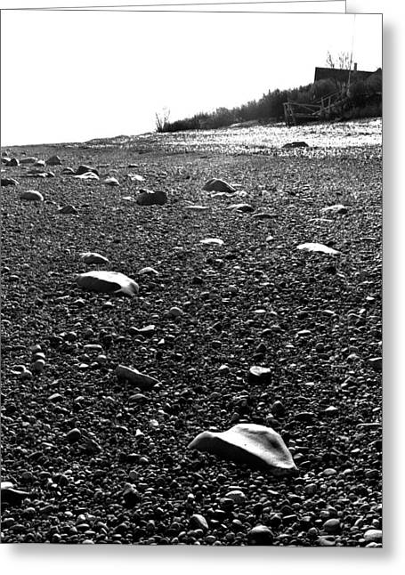 New England Ocean Greeting Cards - Low Tide at Linwoods House 26 Greeting Card by Timothy Bischoff