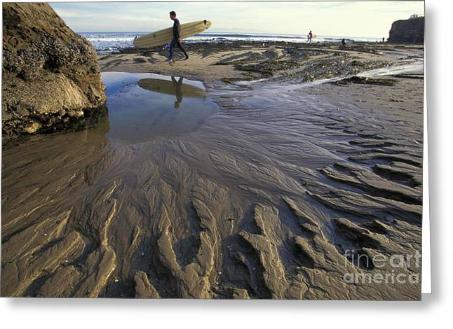 Recently Sold -  - Santa Cruz Surfing Greeting Cards - Low Tide at the Lane Greeting Card by Stan and Anne Foster