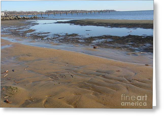 Tide Pyrography Greeting Cards - Low Tide Chesapeake Bay Greeting Card by Valia Bradshaw