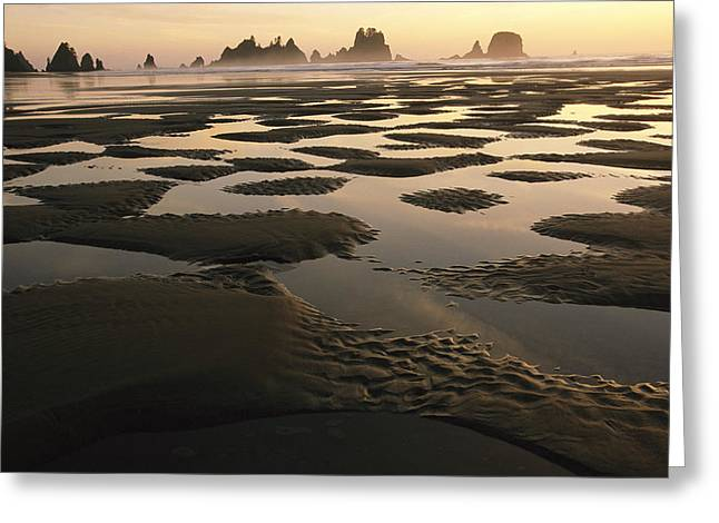 Park Scene Greeting Cards - Low Tide On A Beach With Sea Stacks Greeting Card by Melissa Farlow