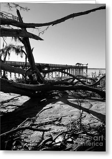 Shawna Gibson Greeting Cards - Low tide Greeting Card by Shawna Gibson